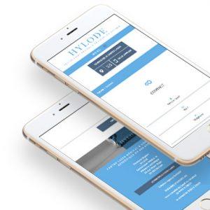 Hylode web design